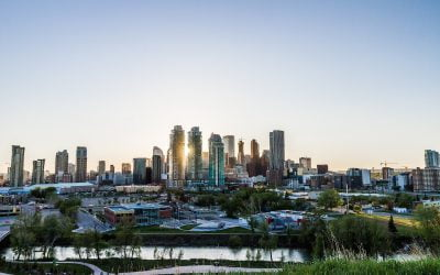 Do Your Due Diligence When Searching for a Calgary Realtor